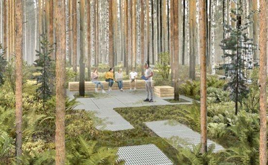 На изображении может находиться: растение, дерево, на улице и природа